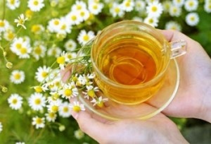 Chamomile Benefits for Skin Health