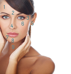 Facial Mapping Acne Guide